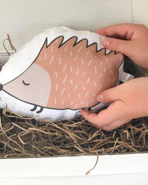 Sleepy hedgehog decorative pillow set